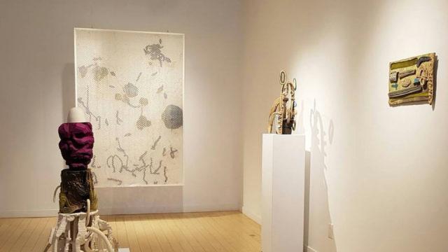 A Cabinet of Curiosities Exhibition / Exposición Gabinete de Curiosidades 2017