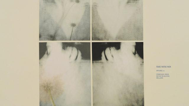 Materiales, decepciones y malos comportamientos por Juliana Silva