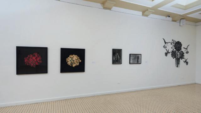 Catálogo de la exposición Iconografías femeninas por Germán Toloza 2018